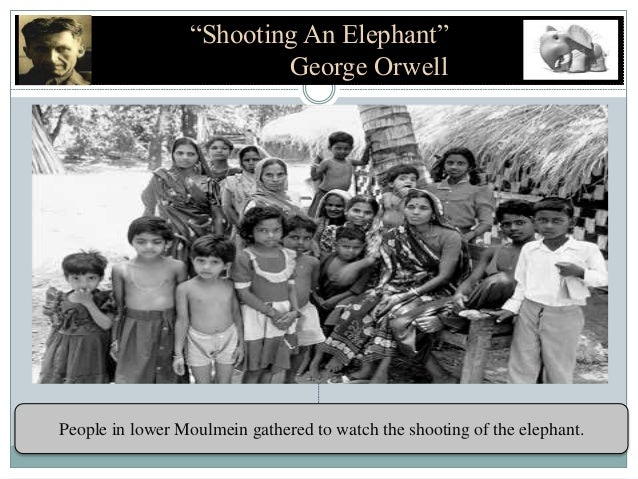 the concept of cowardice in shooting an elephant by george orwell The importance of diction (shooting an important to the overall concept of a essay shooting an elephant, george orwell adopts.