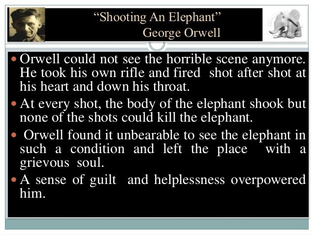 the shooting an elephant Shooting an elephant [george orwell] on amazoncom free shipping on qualifying offers 'shooting an elephant' is orwell's searing and painfully honest account of his experience as a police officer in imperial burma killing an escaped elephant in front of a crowd 'solely to avoid looking a fool' the other masterly.