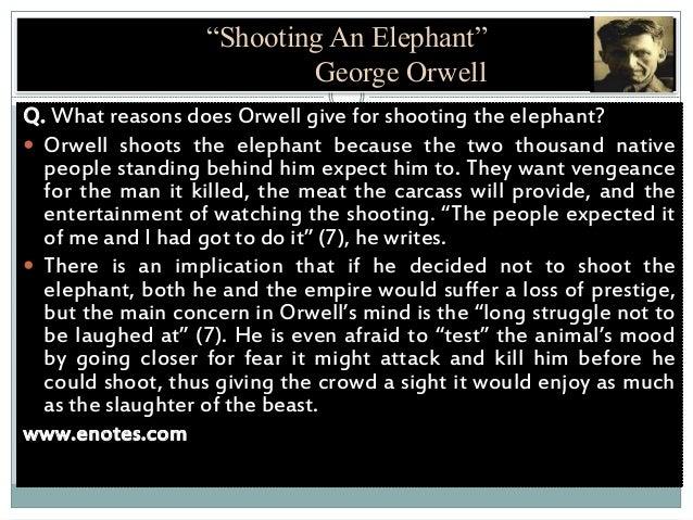 shooting an elephant essay summary