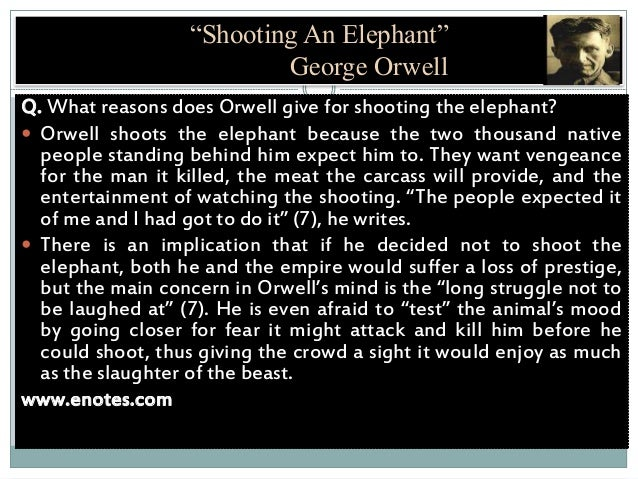 a report on george orwells shooting an elephant A college prof examines shooting an elephant mla citation:  need to report the video  1984 george orwells warning has come to life.