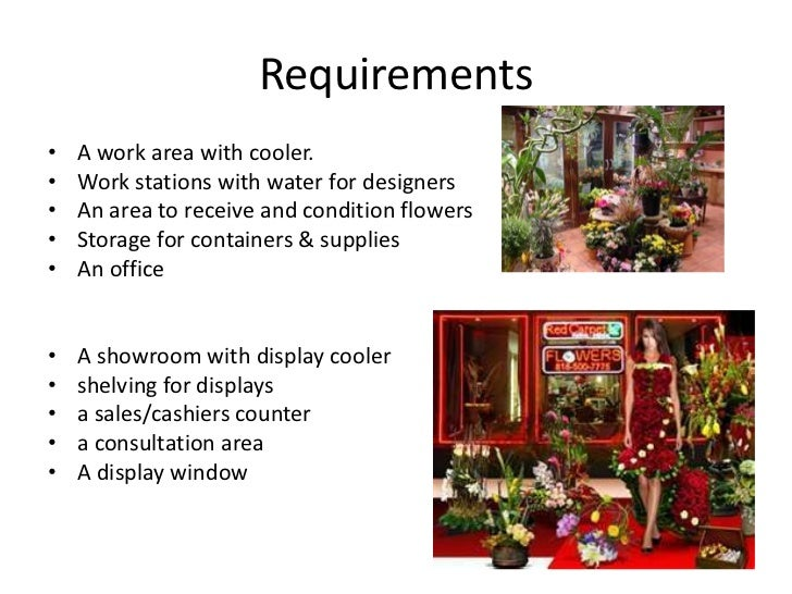 Shop layout project for Flower shop design layouts