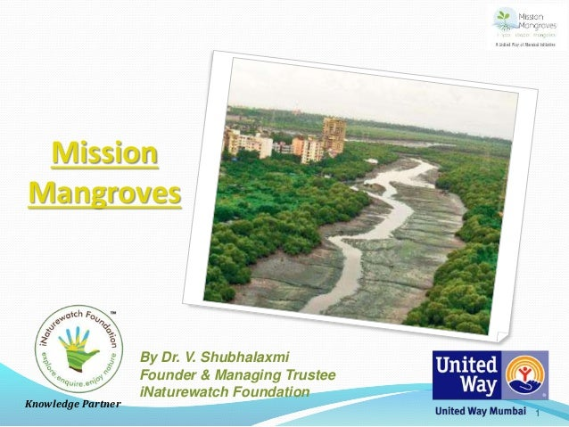 Mission Mangroves Knowledge Partner By Dr. V. Shubhalaxmi Founder & Managing Trustee iNaturewatch Foundation 1