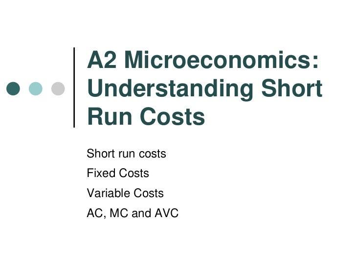Understanding the microeconomics