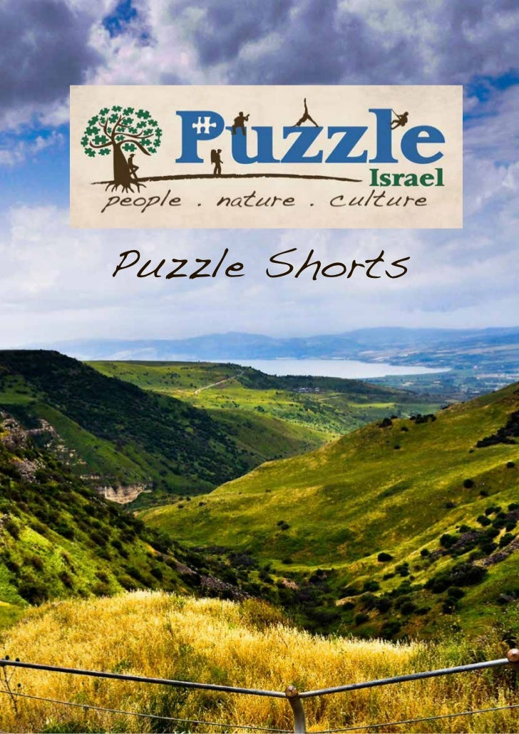 Puzzle Shorts