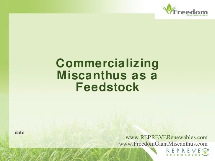 Commercializing Miscanthus as a Feedstock www.REPREVERenewables.com www.FreedomGiantMiscanthus.com date
