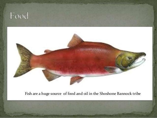 Image Gallery Shoshone Food