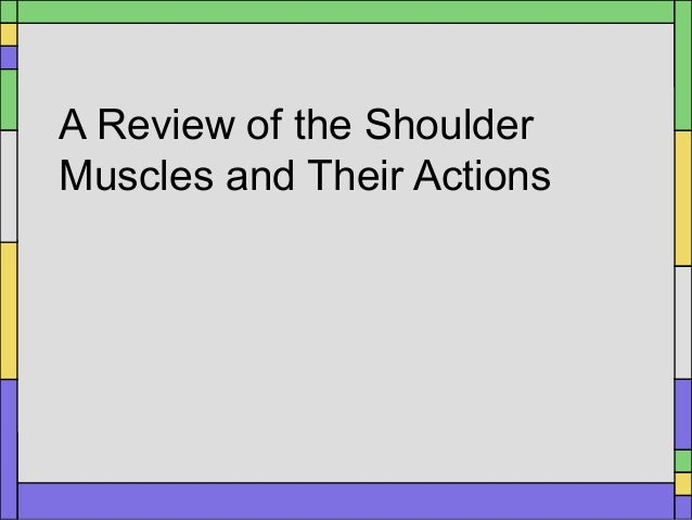 A Review of the ShoulderMuscles and Their Actions