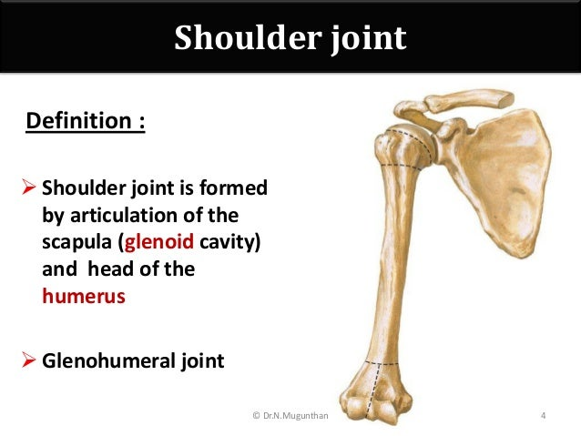 shoulder joint -pdf lecture notes dr.n.mugunthan.m.s, Human Body