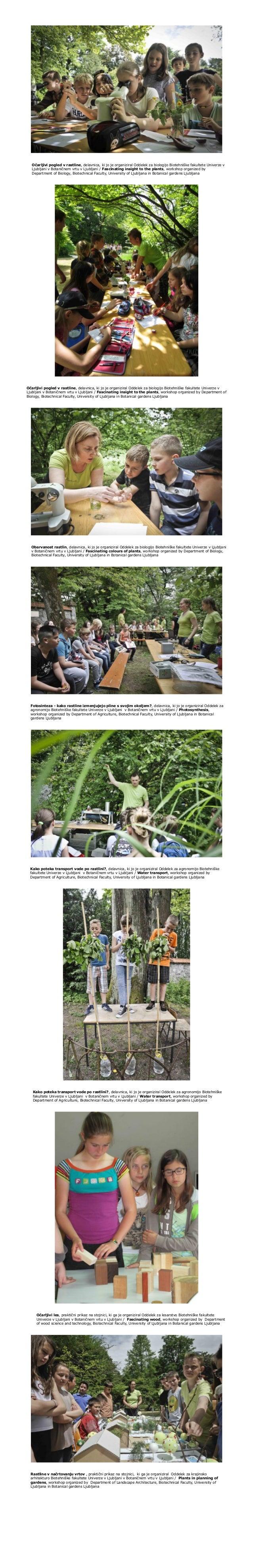 Očarljivi pogled v rastline, delavnica, ki jo je organiziral Oddelek za biologijo Biotehniške fakultete Univerze v Ljublja...