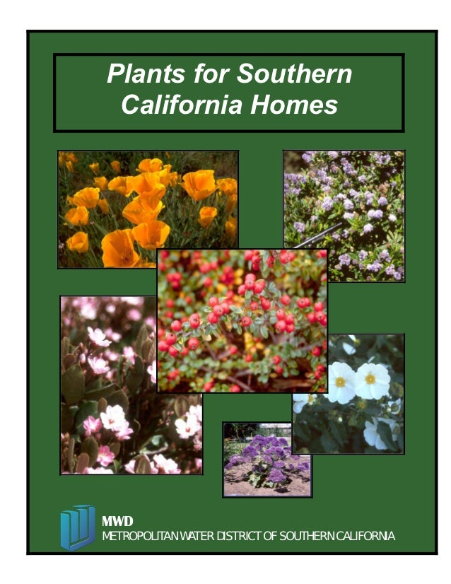 Plants for Southern California HomesMWDMETROPOLITAN WATER DISTRICT OF SOUTHERN CALIFORNIA                    1