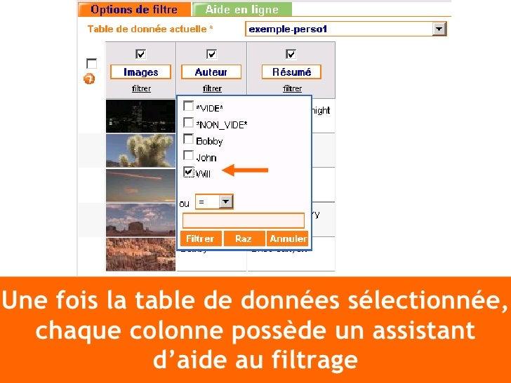 Une fois la table de données sélectionnée, chaque colonne possède un assistant d'aide au filtrage