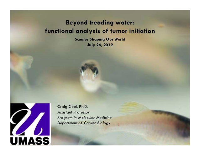 Beyond treading water:functional analysis of tumor initiation             Science Shaping Our World                   July...