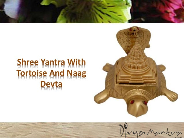 Shree yantra with tortoise and naag devta