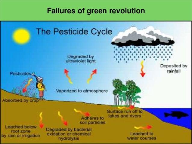 https://image.slidesharecdn.com/shreyapptreenrevolution-150701065521-lva1-app6891/95/ppt-green-revolution-14-638.jpg?cb=1435733797