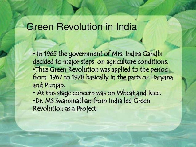 essay writing on green revolution The reason is green revolution in india we are bringing you this article to help you to build a perfect speech and a better essayit will also help you to write a paragraph in your exams so let's start.