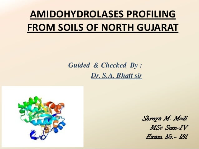 AMIDOHYDROLASES PROFILINGFROM SOILS OF NORTH GUJARAT       Guided & Checked By :             Dr. S.A. Bhatt sir           ...