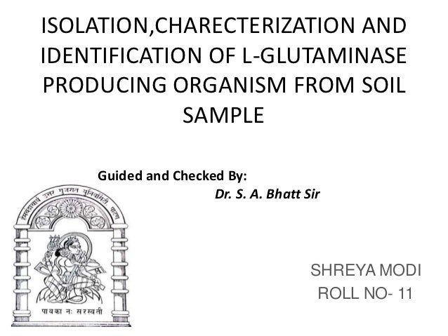 ISOLATION,CHARECTERIZATION ANDIDENTIFICATION OF L-GLUTAMINASEPRODUCING ORGANISM FROM SOIL             SAMPLE    Guided and...