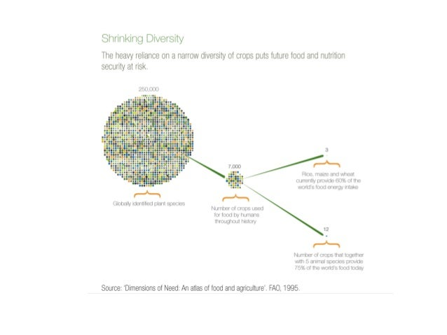 Bioversity International infographic on Shrinking Diversity