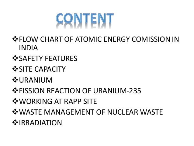 Nuclear Power Plant Ppt