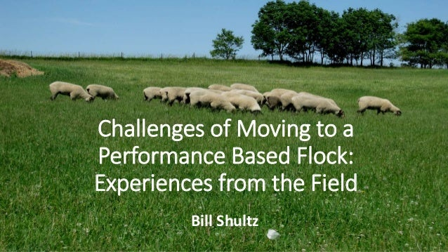 Challenges of Moving to a Performance Based Flock: Experiences from the Field Bill Shultz