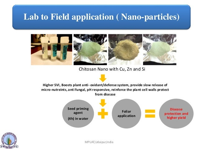 Defense Response boost Through Cu-chitosan Nanoparticles and Plant Gr…