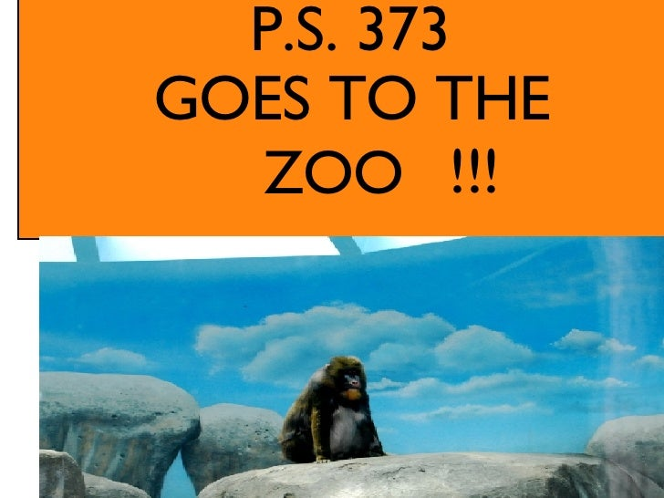 GOES TO THE ZOO  !!! P.S. 373