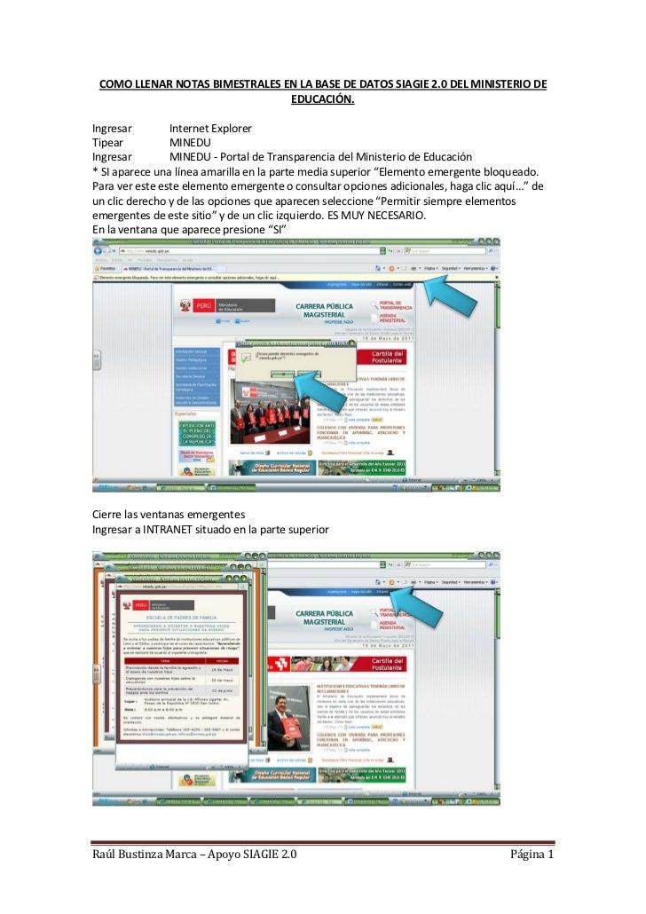 COMO LLENAR NOTAS BIMESTRALES EN LA BASE DE DATOS SIAGIE 2.0 DEL MINISTERIO DE                                EDUCACIÓN.In...