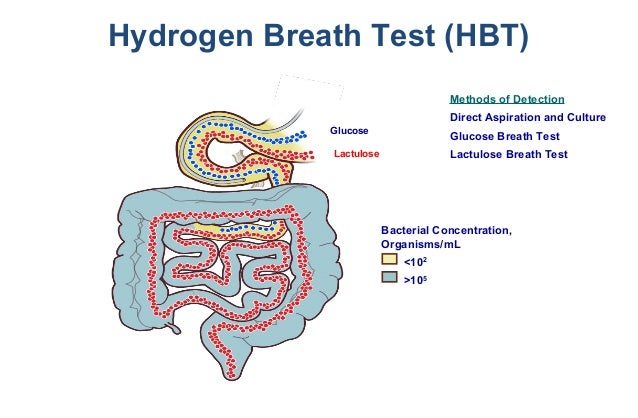 Lactose Intolerance and Hydrogen Breath test