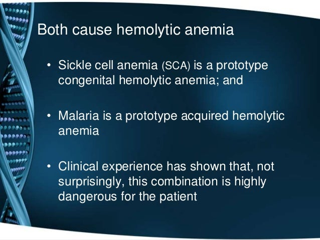 evolutionary relationship between malaria sickle cell anemia