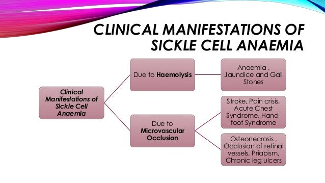 the main characteristics of sickle cell disease Common characteristics of sickle cell disease  the main job of red blood cells is to carry oxygen  educator's guide to sickle cell and school.