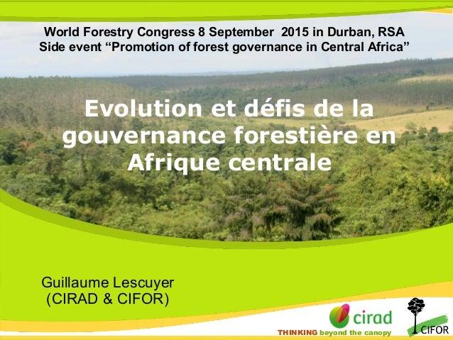 THINKING beyond the canopy THINKING beyond the canopy Evolution et défis de la gouvernance forestière en Afrique centrale ...