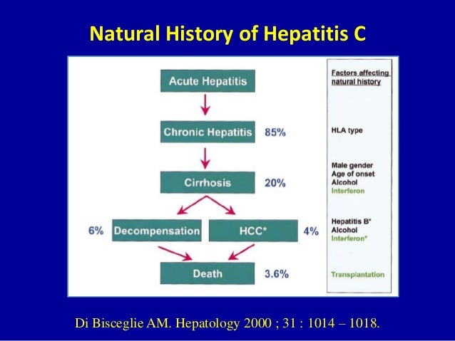 Natural History Of Chronic Hepatitis C