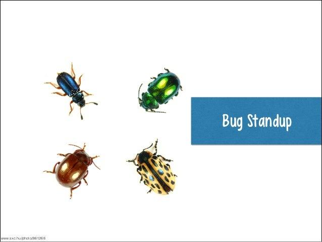 Bug Standup  www.sxc.hu/photo/861268