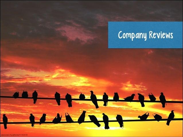 Company Reviews  www.sxc.hu/photo/1110510
