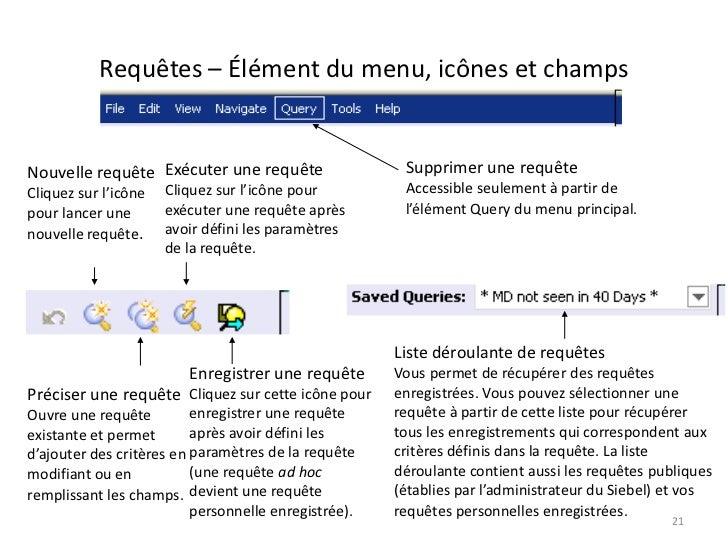 Requêtes – Élément du menu, icônes et champsNouvelle requête Exécuter une requête                  Supprimer une requêteCl...