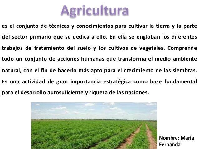 es el conjunto de técnicas y conocimientos para cultivar la tierra y la partedel sector primario que se dedica a ello. En ...