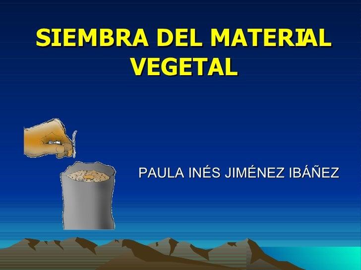 SIEMBRA DEL MATERIAL VEGETAL PAULA INÉS JIMÉNEZ IBÁÑEZ