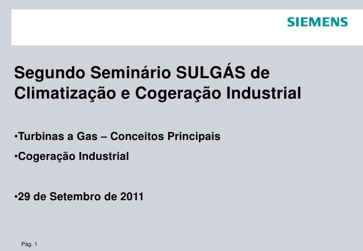 Segundo Seminário SULGÁS deClimatização e Cogeração Industrial•Turbinas a Gas – Conceitos Principais•Cogeração Industrial•...