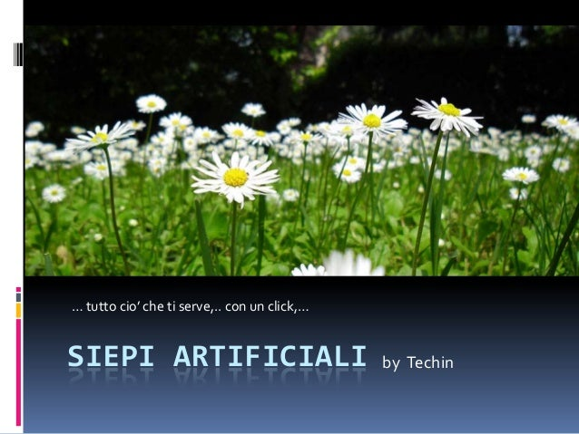 SIEPI ARTIFICIALI by Techin … tutto cio' che ti serve,.. con un click,…
