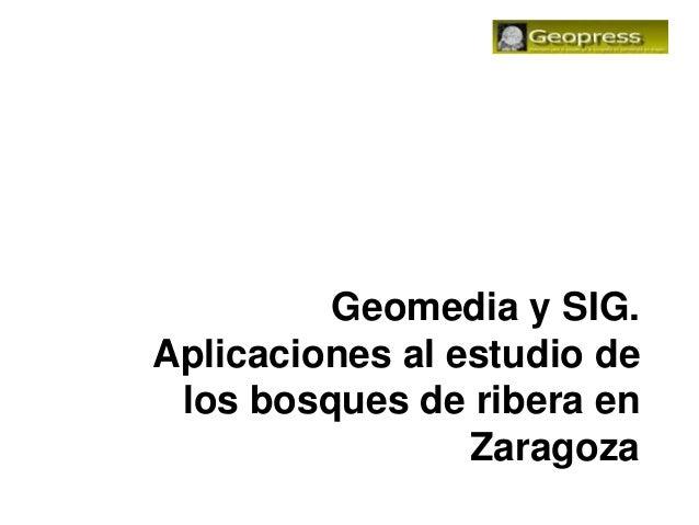 Geomedia y SIG.Aplicaciones al estudio de los bosques de ribera en                 Zaragoza