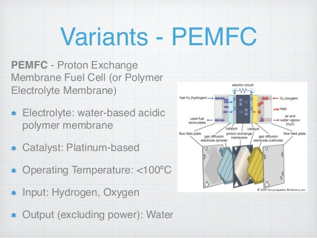 An Overview And Analysis Of Hydrogen Fuel Cell Technology