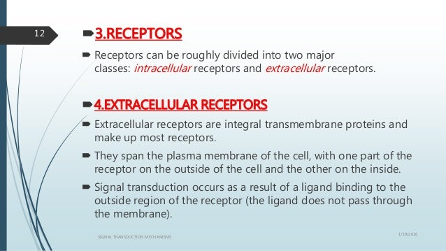 3.RECEPTORS  Receptors can be roughly divided into two major classes: intracellular receptors and extracellular receptor...