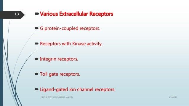 Various Extracellular Receptors  G protein-coupled receptors.  Receptors with Kinase activity.  Integrin receptors.  ...