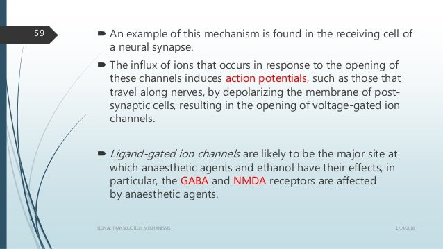  An example of this mechanism is found in the receiving cell of a neural synapse.  The influx of ions that occurs in res...
