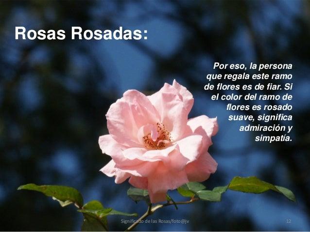 Significado de las rosas - Significado de los colores de las rosas ...