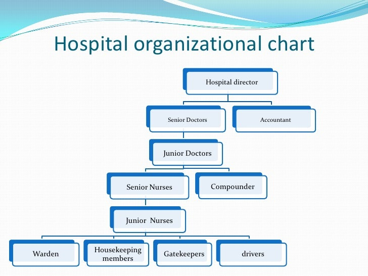 hospital hierarchy chart - Chart