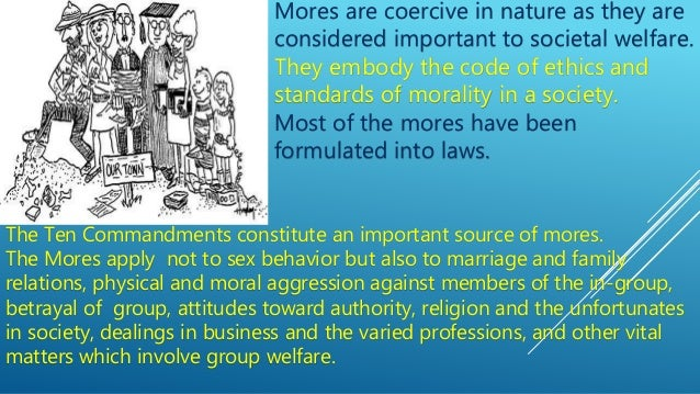 importance of studying society and culture