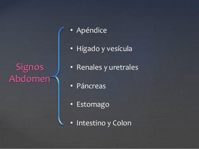 Signos  Abdomen  • Apéndice  • Hígado y vesícula  • Renales y uretrales  • Páncreas  • Estomago  • Intestino y Colon