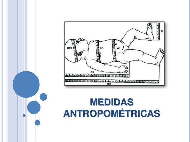 Son las medidas antropom tricas cwiek for Cuales son medidas antropometricas