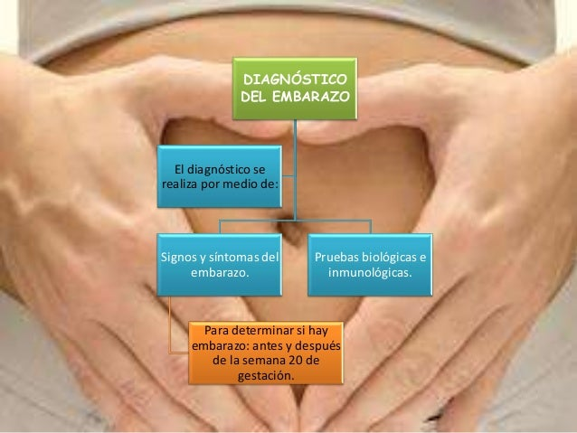 DIAGNÓSTICO DEL EMBARAZO Signos y síntomas del embarazo. Para determinar si hay embarazo: antes y después de la semana 20 ...